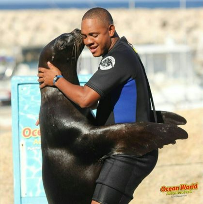 man dances with seal