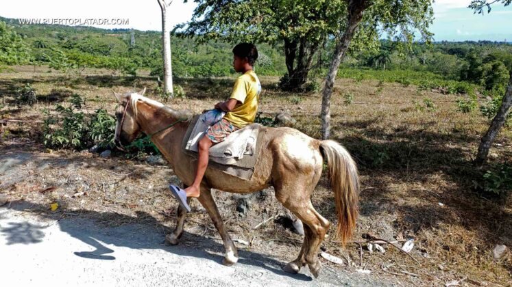 Child on a horse in Puerto Plata