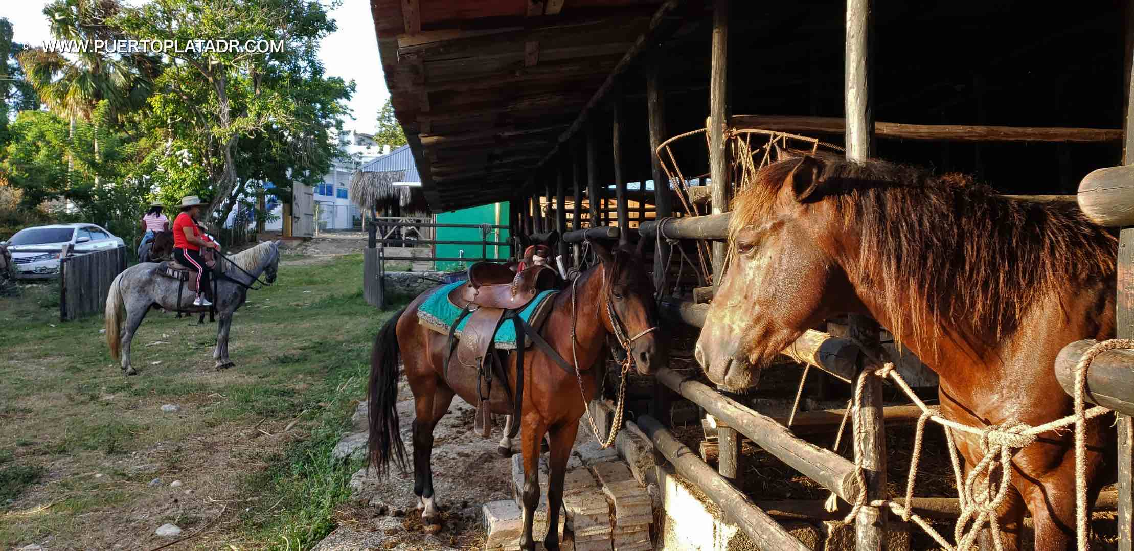 Lorilar ranch in Puerto Plata