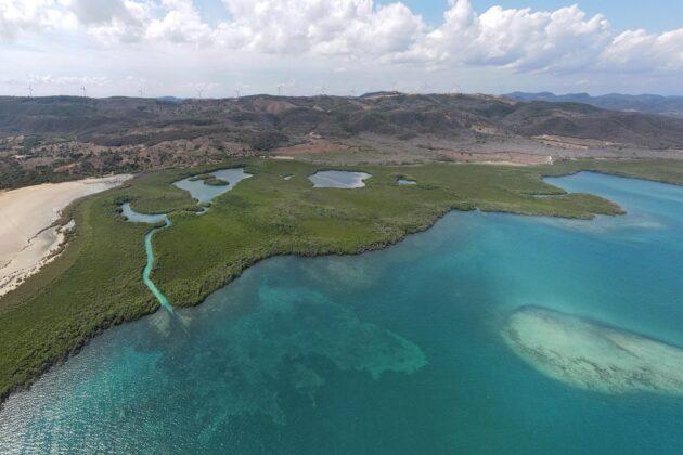 Aerial view of Manati reserve